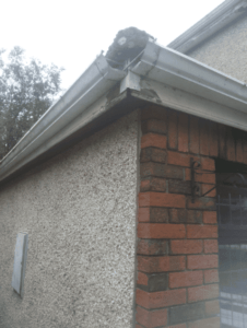 Guttering Replacement in Bristol